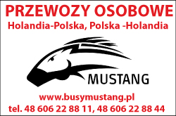 Busy Mustang - przewozy do Niemiec